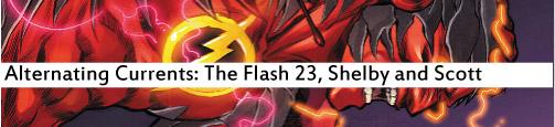 flash 23