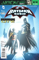 Batman and Robin 17