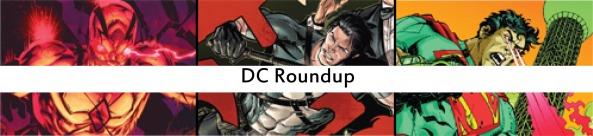 dc roundup16
