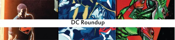 dc roundup19