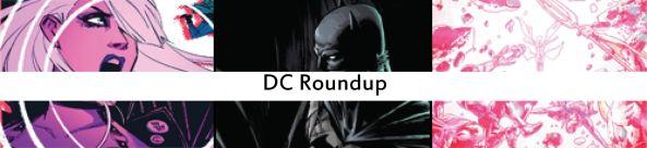 dc roundup27
