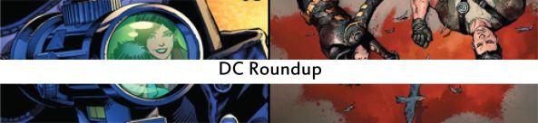 dc roundup32